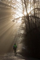 Person jogging near Lena Cove as morning fog begins to burn off, near Juneau, Southeast Alaska, Winter
