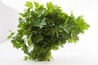 Flat leaf parsley bunch