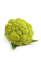 Fresh green cauliflower at white background