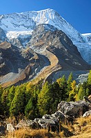 First snow in autumn on the peaks of the Pennine Alps, mountain slope with remnants of a glacier and a bent lateral moraine, valley Loetschental, Vala...