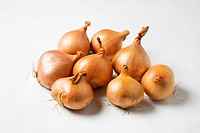 Shallots on a White Background