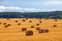 czech republic, southern bohemia _ bales of hay