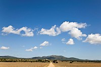 Dirt road in Mediterranean countryside (thumbnail)