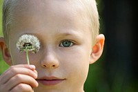 Little boy with a dandelion seed head (thumbnail)