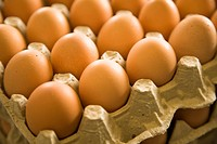 Carton of brown eggs (thumbnail)