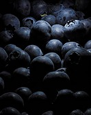 Blueberries Still Life