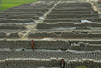 A brickfield There are 6000_7000 brickfields in Bangladesh, usually situated outside towns and cities in the low_lying lands However, nearly half of t...