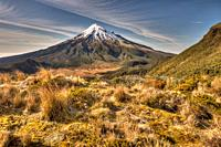 Mt Egmont / Taranaki from Pouakai Range, alpine shrubs,and tussock covered slopes, Taranaki.