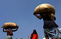 Men unloading sacks full of wheat from a ship in the Chittagong port in Chittagong, Bangladesh February 12, 2009