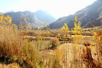 fall in afghanistan