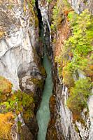 Marble Canyon, Kootenay National Park, British Columbia, Canada