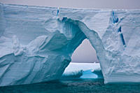 Iceberg detail in and around the Antarctic Peninsula during the summer months, Southern Ocean MORE INFO An increasing number of icebergs is being crea...