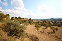Spain, Catalunya, Near Montblanc, View of landscape