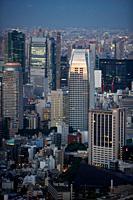 Atago Green Hils Mori Tower, Tokyo City View, Tokyo, Japan.