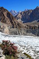 Passu glacier, Hunza Valley, Karakorum, Pakistan
