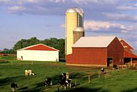 Amish farm, Lancaster County, Pennsylvania, United States