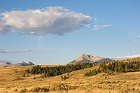 Open prairie and mountains in Yellowstone National Park