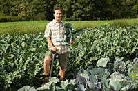 Man standing in cabbage field