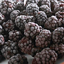 Frozen blackberries, close_up