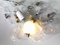 Lightbulbs on white background