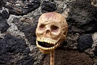 A paper skull with corn teeth lean against a wall during preparations for the Day of the Dead celebrations in Coyoacan