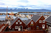 Fleet of Whale Watching Boats, Husavik, Iceland