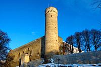 Toompea castle  Christmas in Tallin Estonia