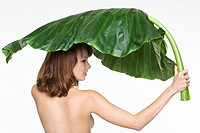 Rear view of topless woman holding large leaf