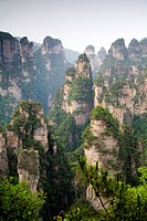 Hunan,Zhangjiajie National Forest Park,Zhangjiajie,Beauty in Nature,Mt Tianzi,Mount Tianzi,