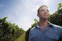 Young man in vineyard