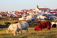 Typical village in Extremadura, Spain