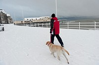 A man walking his dog on the promenade, Aberystwyth Wales UK in the snow, December 2010