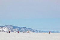Four mushers running, driving dog sleds, teams of sled dogs, mountains behind, frozen Lake Laberge, Yukon Territory, Canada
