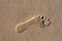 Foot prints , footprints in sandy beach , Fuerteventura , Canary Islands