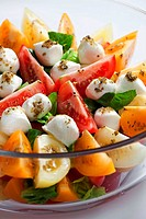 tomato salad with mozzarella cheese
