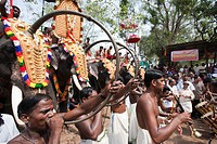 India, Kerala, Thrissur, Pooram festival, it is one of the biggest festivals in India where elephants are decorated magnificiently