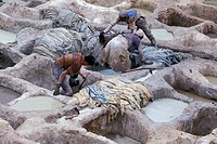 Morocco, Fes el_Bali medina, Men working tannery vats in which leather is treated with lime