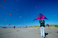 USA, Washington, Long Beach. Kites on the beach, Washington State kite festival