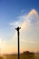Irrigation, LLeida Province, Spain.