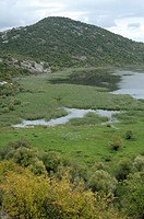 Montenegro  Skadar lake National Park near Virpazar