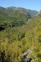 Montenegro  Valley of Orahovztica near Virpazar and Skadar lake
