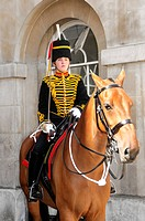 Horse Guard, Household Cavalry Barracks, Elite Force, Whitehall, London, England, United Kingdom, Europe