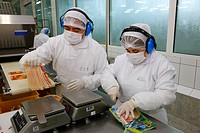 Workers wearing protective clothing, packing meat products, Llanquihue, southern Chile, South America