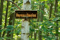 Official street sign Hurenschneise, German for whore's path in the woods near Zeppelinheim, Neu-Isenburg, Offenbach district, Hesse, Germany, Europe