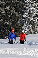 People hiking on winter hiking trail in snowy landscape, Hemmersuppenalm, Reit im Winkl, Chiemgau, Bavaria, Germany, Europe