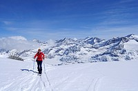 Female backcountry skier ascending to Granatspitze, Granatspitz mountain range, Hohe Tauern, Salzburg, Austria