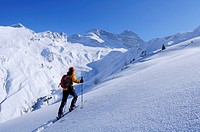 Woman backcountry skiing, ascending mountain towards Hohe Warte, Olperer in background, Hohe Warte, Schmirntal valley, Tuxer Alpen range, Tyrol, Austr...