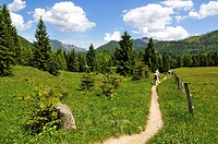 Hikers at Nattersberg alp, Reit im Winkl, Bavaria, Germany, Europe