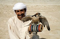 Falconer on the beach, Dubai, United Arab Emirates, Middle East, Asia