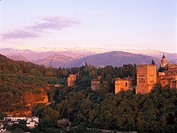 Alhambra castle in the afterglow, Granada, Andalusia, Spain, Europe